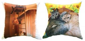 猫写真の角型クッション